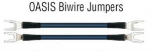 WireWorld Oasis Biwire Jumpers | Zworki Biwire 4 szt