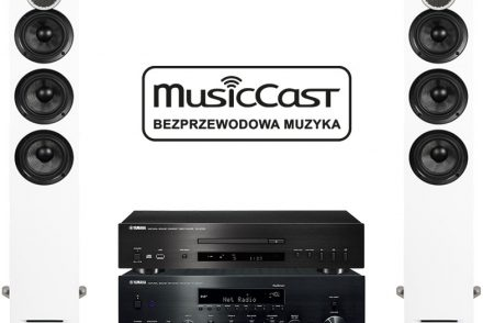Yamaha R-N803D + CD-S700 + Debut Reference F5