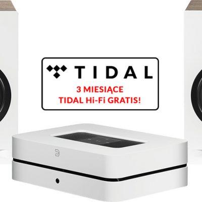 Bluesound Powernode 2i (HDMI) biały) + Debut Referece B6 biały