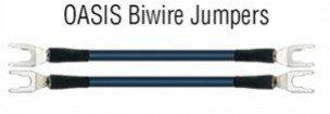 WireWorld Oasis Biwire Jumpers   Zworki Biwire 4 szt