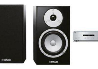 Yamaha A-S201 S + NS-BP301