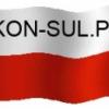 Kon-sul.pl